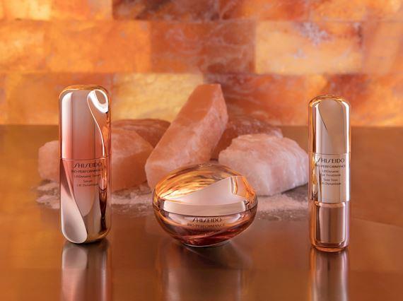 Shiseido Spa Milan Massages and Treatments